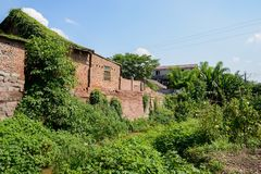 Creeper-covered countryside houses alongside creek in sunny summ Stock Photos