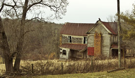 Creepy abandoned farmhouse with buzzards on the roof Royalty Free Stock Photos
