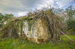 Creepy abandoned House Royalty Free Stock Image