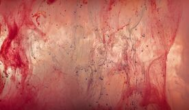 Free Creepy Abstract Red Floating Blood Background. Halloween Background From Ink Watercolor Royalty Free Stock Image - 198526836