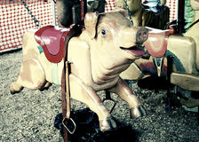 Creepy carousel pig. At a county fair royalty free stock photography