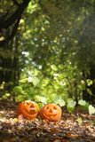 Creepy carved pumpkin face Royalty Free Stock Images