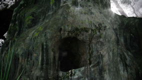 A Creepy Cave in a Rain forest Fill with Mosquito and Flying Insects stock video footage