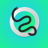 Creepy Centipede Worm. Insect Vector Illustration Royalty Free Stock Image