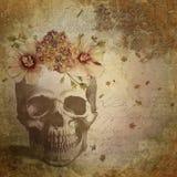 Vintage Ephemera and Rose Skull Background - Goth Macabre - Halloween - Digital Paper stock illustration
