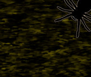 Creepy Crawler Black Spider on Dark Background Stock Photo