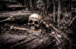 Creepy, Dark, Fear Royalty Free Stock Photo