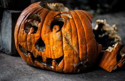 Creepy decaying carved pumpkin / Halloween concept royalty free stock image