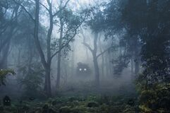 A creepy, fantasy forest of trees, back lighted with spooky, glowing eyes of creatures in the undergrowth