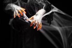 Creepy halloween hands with red, orange and silver covered in a spider web with spiders royalty free stock image