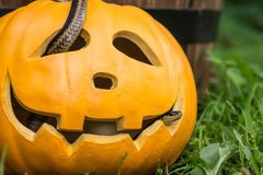 Creepy Halloween Pumpkin Royalty Free Stock Image