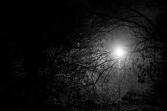 Creepy park at night with illumination Royalty Free Stock Photos