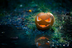 Creepy pumpkin next to a water stream Royalty Free Stock Image