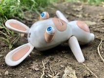Creepy rabbit royalty free stock photos