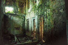Creepy ruined and overgrown by plants interior of old mansion. Life after humanity post-apocalyptic concept Royalty Free Stock Images