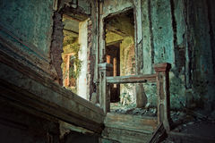 Creepy ruined and overgrown by plants interior of old mansion. Life after humanity post-apocalyptic concept. Creepy ruined and overgrown by plants interior of stock photo