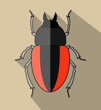 Creepy Scarab Beetle. Insect Vector Illustration Stock Photography