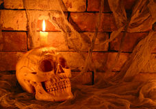 Creepy skull with candle in the dark Stock Images