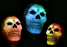 Creepy Skulls Royalty Free Stock Photo
