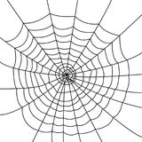 Isolated spider web. Creepy spider web over a white background. Vector illustration Stock Image