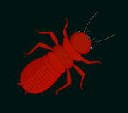 Creepy Termite Insect. Vector Illustration Stock Photography