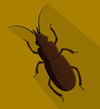 Creepy Totengraber Insect. Vector Illustration Royalty Free Stock Photography