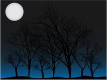 Creepy trees under full moon vector background Stock Image
