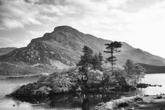 Cregennen sjöar i Snowdonia Arkivfoton