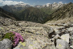 Creguena Valley in Aragon Pyrenees Stock Image