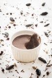Crema batida de Choco Imagen de archivo libre de regalías