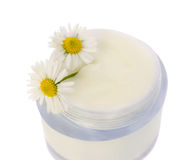 Crema cosmética Imagen de archivo