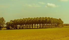 Crema Cremona, Włochy Fotografia Stock