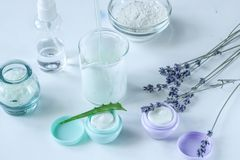 Crema de cara natural orgánica hecha en casa con la lavanda y el áloe Vera para la salud de la piel foto de archivo libre de regalías