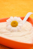 Crema de la manzanilla Foto de archivo libre de regalías