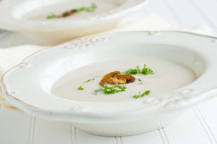 Crema de la sopa de seta Foto de archivo
