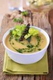 Crema de la sopa vegetal Imagen de archivo libre de regalías