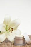 Crema de Skincare Imagen de archivo libre de regalías