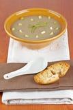 Crema dei crostini della zuppa e del pane di fungo Fotografia Stock