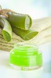 Crema del cosmetico di vera dell'aloe Fotografia Stock