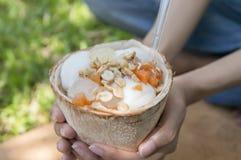 Crema del gelato al cocco Immagini Stock