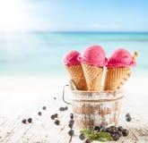 Crema del gelato alla frutta Fotografia Stock Libera da Diritti