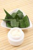 Crema dell'aloe Immagini Stock