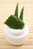 Crema dell'aloe Immagine Stock