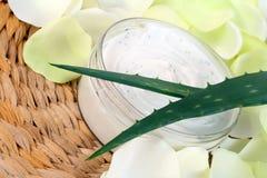 Crema dell'aloe Fotografia Stock