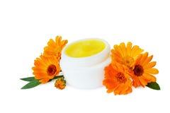 Crema dell'idratante della pelle immagine stock