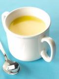 Crema della minestra di pollo Fotografia Stock
