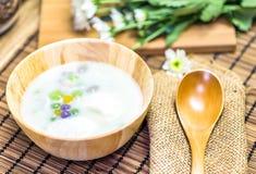 Crema della noce di cocco Immagine Stock