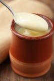 Crema della vaniglia Immagine Stock Libera da Diritti