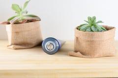 Crema dental del carbón de leña en tubo fotos de archivo libres de regalías