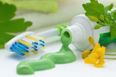 Crema dental y cepillo de dientes herbarios Foto de archivo libre de regalías